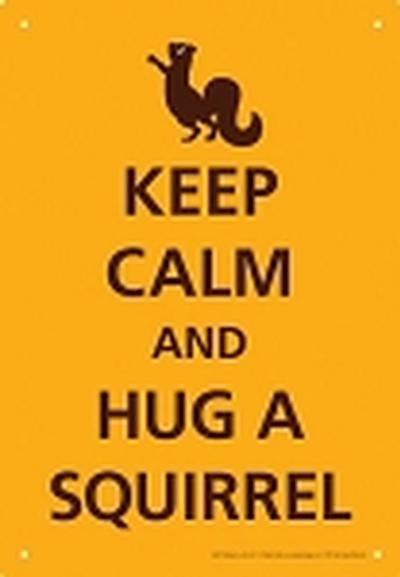 Click to get Keep Calm Squirrel Tin Sign