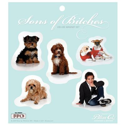 Click to get Sons of Btches Magnet Set