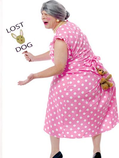 Click to get Lost Dog Costume